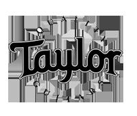 Taylor Service Repair